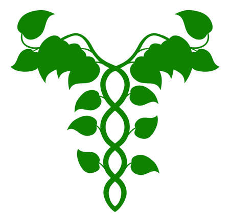 herbalist: Illustration of a caduceus made up of vines, DNA or holistic medicine concept