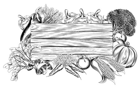 A vintage retro woodcut print or etching style vegetable wooden sign illustration Vector