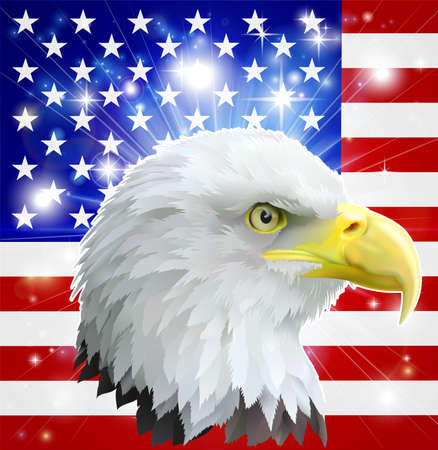 independance: Eagle America love heart concept with and American bald eagle in front of the American flag Illustration