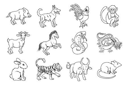 year of rooster: Las ilustraciones de los doce chinos del zodiaco icono animales