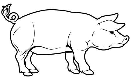 An illustration of a pig, could be a label for pork Vector