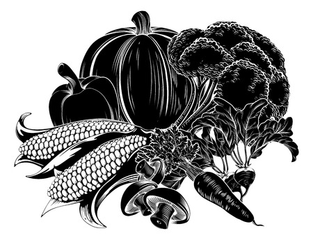 grocer: An illustration of a vegetables, could be a food label or menu icon for vegetarian options Illustration
