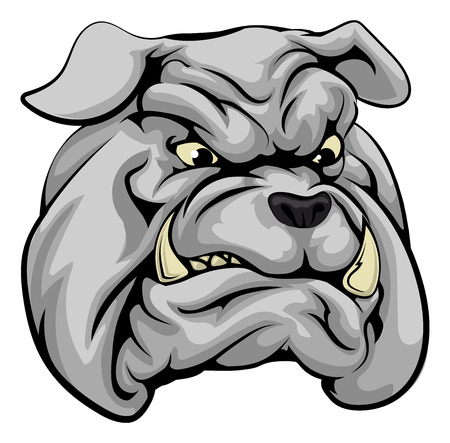 An illustration of a fierce bulldog animal character or sports mascot Vector