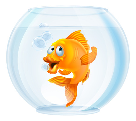 tank fish: An illustration of a cute cartoon goldfish in a gold fish bowl