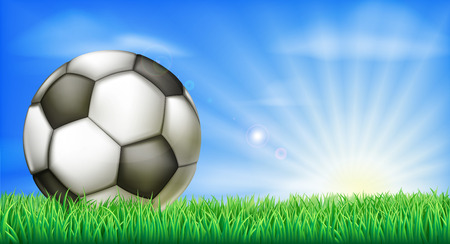 grass: A soccer football in a green grass field pitch with sun rise.