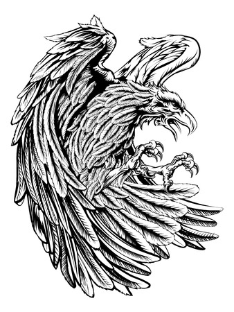 eagle flying: An original eagle illustration  in a vintage wood cut style Illustration
