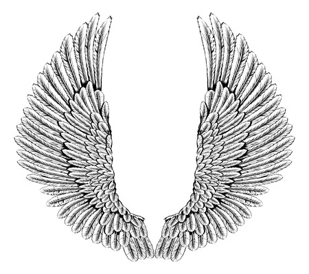 etched: An illustration of a pair of angel or eagle wings spread