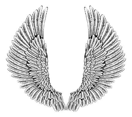 tatouage ange: Une illustration d'une paire de ange ou ailes d'aigle se propager Illustration