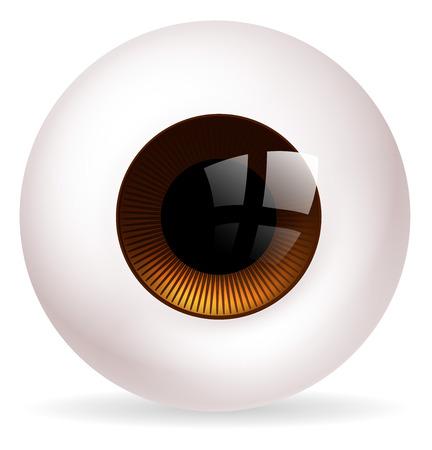 eye ball: Una ilustraci�n de una bola de ojo redondo grande o globo ocular