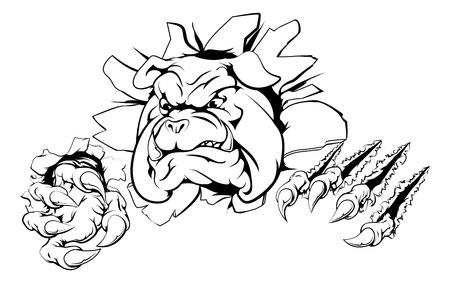 bulldog: A bulldog sports mascot or character breaking out of the background or wall
