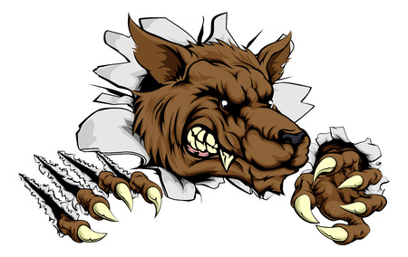A tough wolf animal sports mascot breaking through a wall Vector
