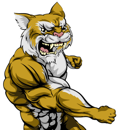 An illustration of a tough wildcat animal character or sports mascot punching Vector