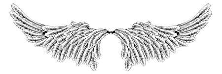 woodcut: An illustration of a pair of wings like angel or eagle wings