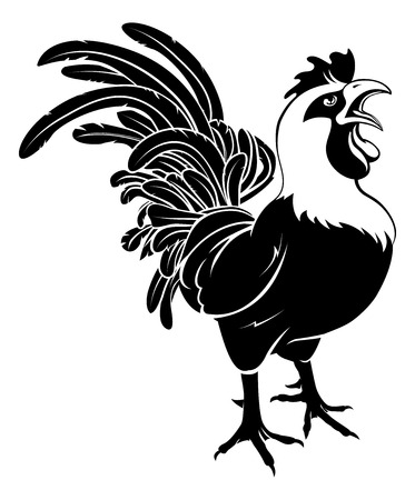 crowing: An illustration of a proud rooster cockerel chicken crowing
