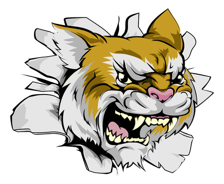 breaking out: Wildcat concepto innovador mascota de los deportes de la mascota de los deportes salvajes o car�cter romper el fondo o en la pared