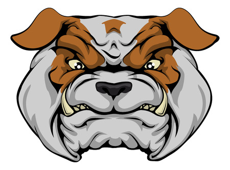 bull dog: A mean bulldog dog character or sports mascot staring forward