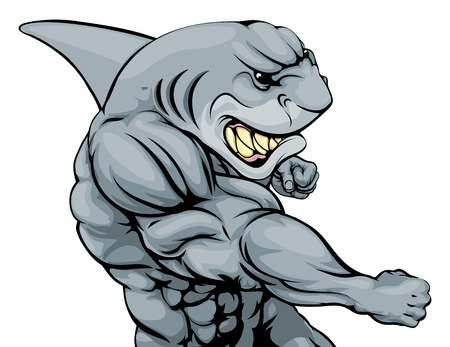 tiburon caricatura: Un duro musculoso mascota de los deportes de car�cter tibur�n ataca con un pu�etazo