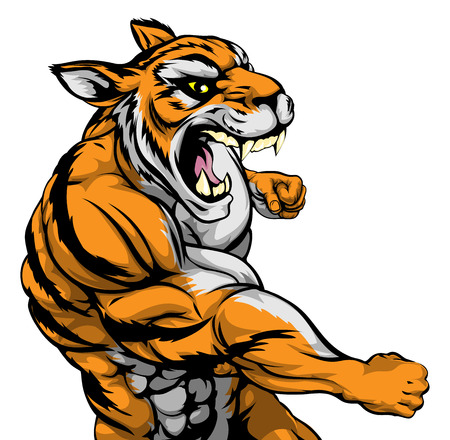 A mean looking tiger sports mascot fighting and punching with fist