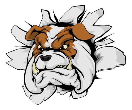 breaking out: Bulldog mascota de los deportes concepto innovador de una mascota de los deportes bulldog o el car�cter romper el fondo o en la pared