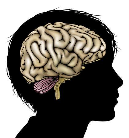 escuela infantil: A la cabeza del niño en silueta con el cerebro. Concepto para el niño mental, desarrollo psicológico, el desarrollo del cerebro, el aprendizaje y la educación u otro tema médico