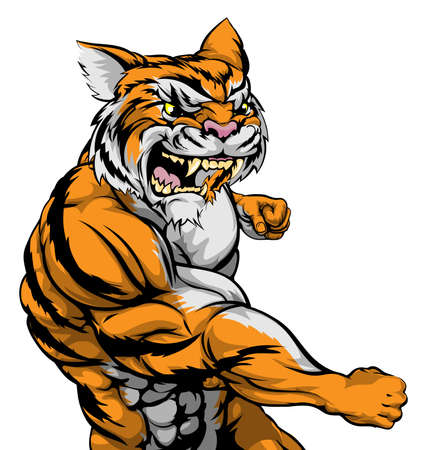 fighting: A tough muscular tiger character sports mascot attacking with a punch