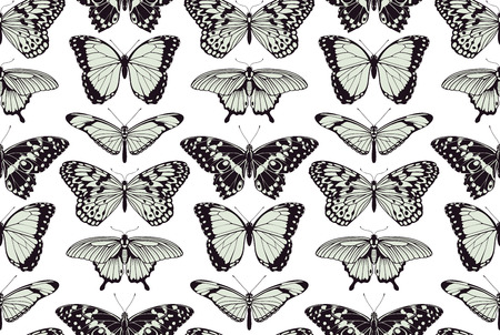 papillon dessin: Un papillon seamless tilable motif de fond conception vintage illustration Illustration