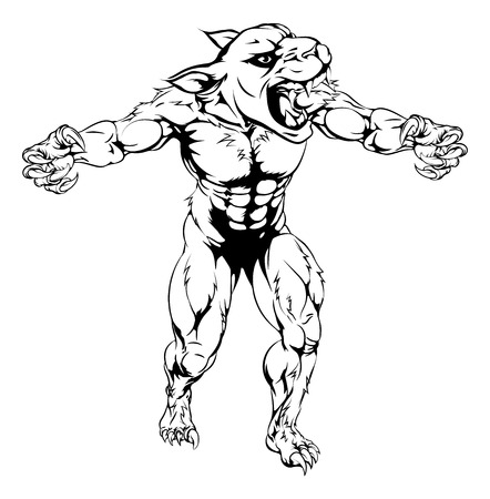 wildcat: An illustration of a Panther scary sports mascot with claws out Illustration