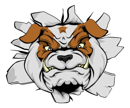 angry dog: Bulldog mascot breakthrough concept of a bull sports mascot or animal character ripping through a wall Illustration