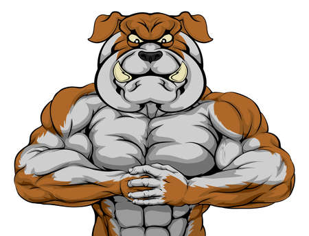 Mean looking bulldog character ready for combat punching fist into palm Vector