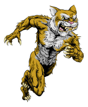 saber tooth: A wildcat man character or sports mascot charging, sprinting or running Illustration