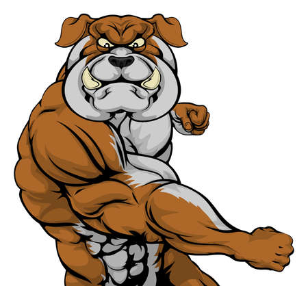 A tough muscular bulldog mascot character in a fight punching Vector