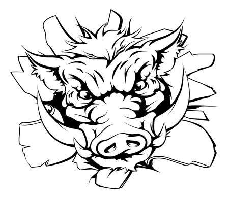 hog: An illustration of a boar charging through the background