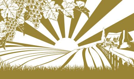 siloette: Vineyard illustration grapes  Illustration