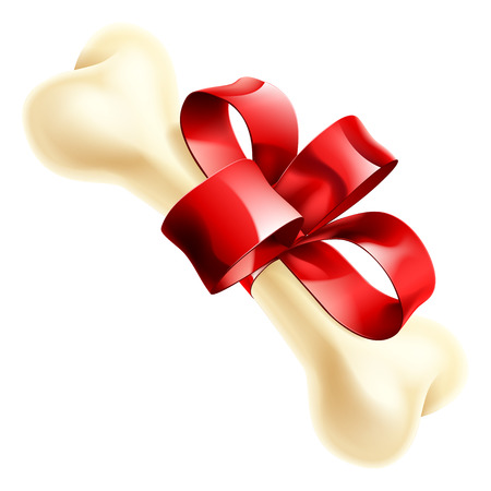 An illustration of a big dogs bone wrapped in a ribbon and bow as a Birthday or Christmas gift