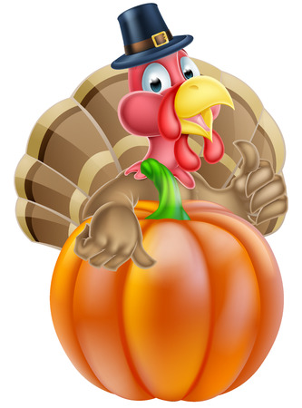 funny turkey: Cartoon thanksgiving turkey chef giving a thumbs up and wearing pilgrim hat behind a pumpkin