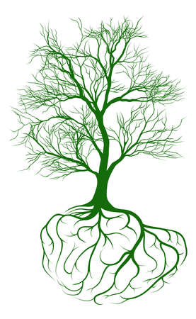 tree and roots: A tree growing from rooots shaped like a human brain Illustration