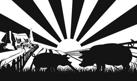 cerdos: Cerdos en silueta que se coloca en el primer plano