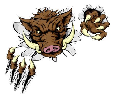 jabali: Una mascota deportiva jabalí romper la pared con garras Vectores