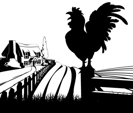 Rooster in silhouette standing in the foreground and an a farm house thatched cottage in an idyllic landscape of rolling hills with sunrise in the background