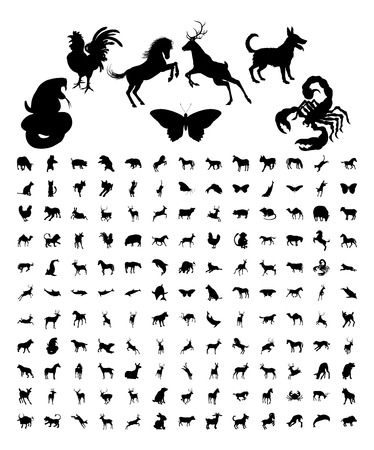 animales del zoologico: Un gran conjunto haz de alta calidad siluetas muy detalladas de los animales Vectores
