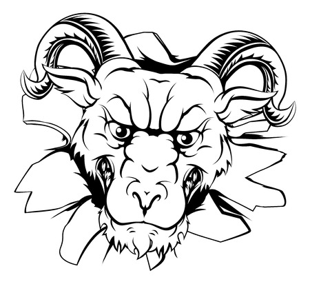 sheep sign: An illustration of a tough looking ram animal sports mascot or character breaking through