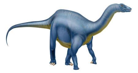 dinosaurio: Una ilustración de un dinosaurio Diplodocus de la familia de los saurópodos como Brachiosaurus y otros dinosaurios de largo cuello. Lo que solíamos llamar brontosaurio