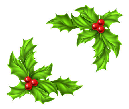 holly leaf: Christmas Holly and red berries design elements