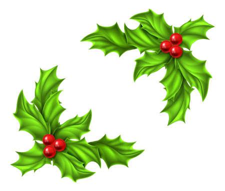 Vánoční Holly a červené bobule designové prvky