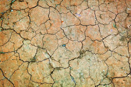 gritty: dry ground with cracks Stock Photo