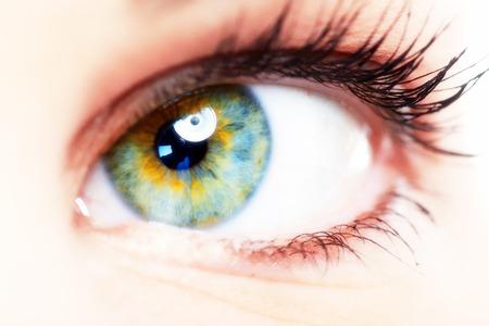 oculist: Eye