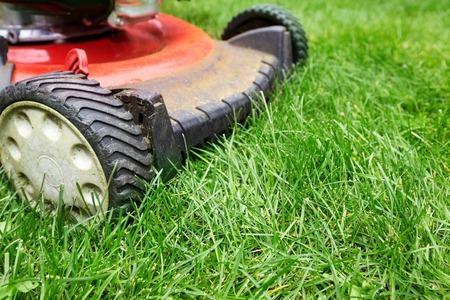cut grass: Red Lawn mower cutting grass. Gardening concept background
