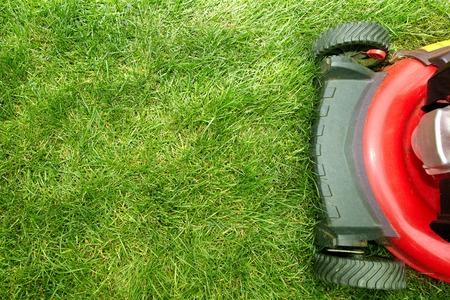 Podadora de césped rojo cortando el césped. Jardinería concepto de fondo