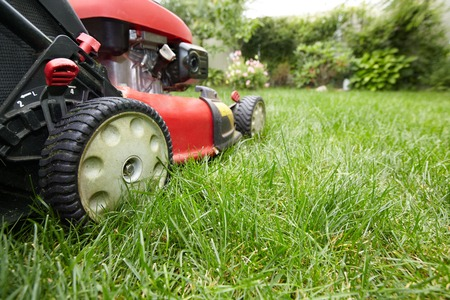 Lawn mower. Stock Photo