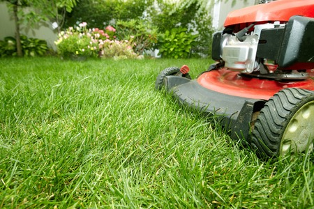 grass cutting: Lawn mower. Stock Photo